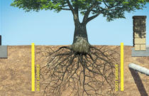 Root Barrier
