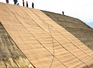 Erosion Control Mats