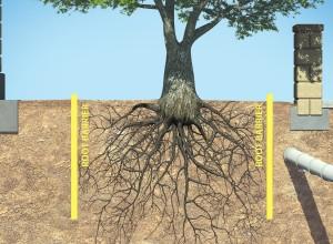Root Barrier