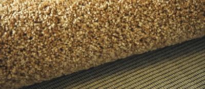 Carpet Backing